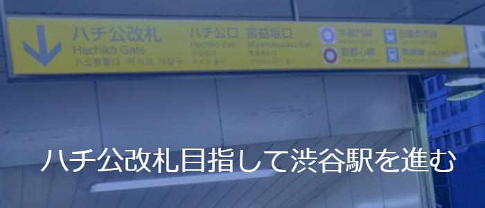 ハチ公改札目指して渋谷駅を進む